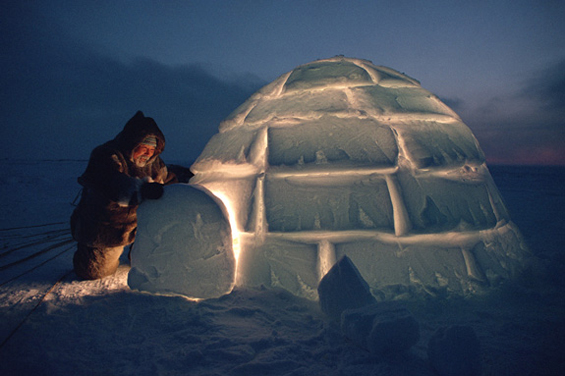Igloos In The Arctic Arctic A Friend Acting