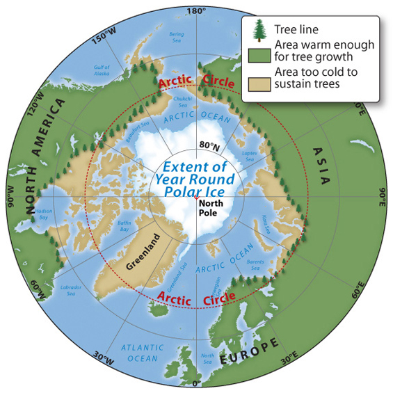 Arctic Line : Opinions on tree line