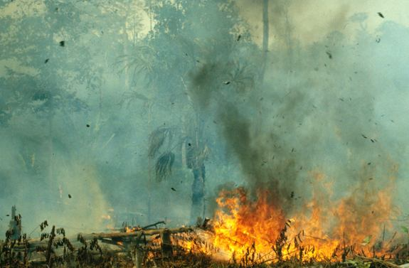 Fires rage in Indonesia before the 1997 El Niño