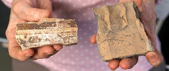 Pottery excavated from sites in the Amazon Basin