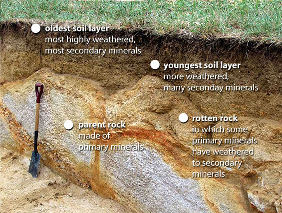 Dig it the secrets of soil for Soil forming minerals