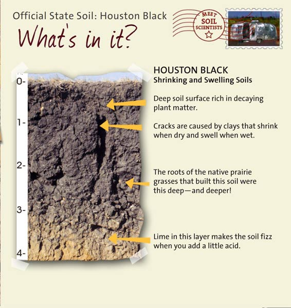 State soils texas for What makes up soil