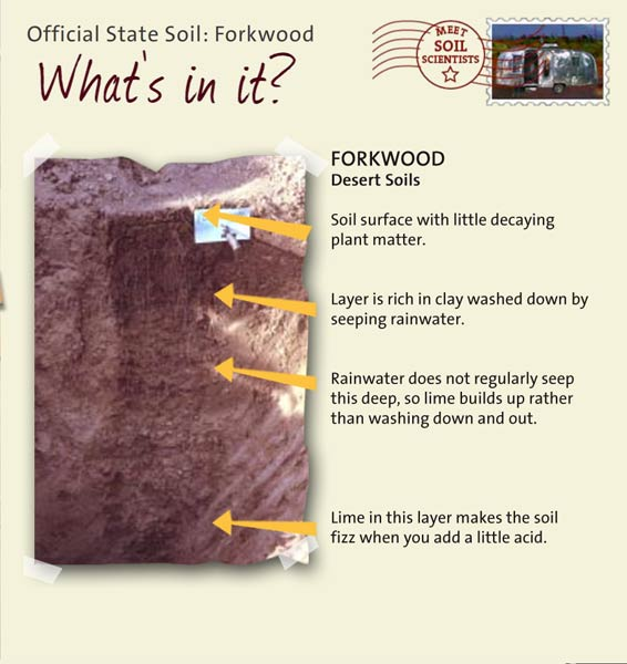State soils wyoming for What makes up soil